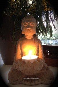 Bonheur - Bouddha  - emergence - conscience