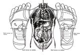 Représentation corps pied noir et blanc