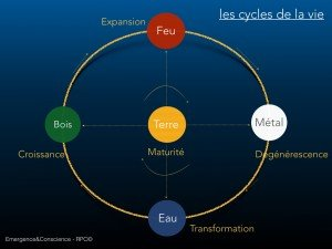 Roue des 5 elements - emergence et conscience