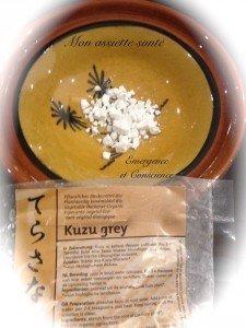 kuzu-emergence-conscience