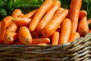 panier carottes - Emergence et Conscience