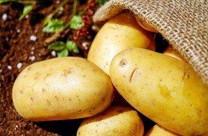 pomme de terre, recette, végétarien, sans gluten, sans lactose, mon assiette santé, alimentation vivante